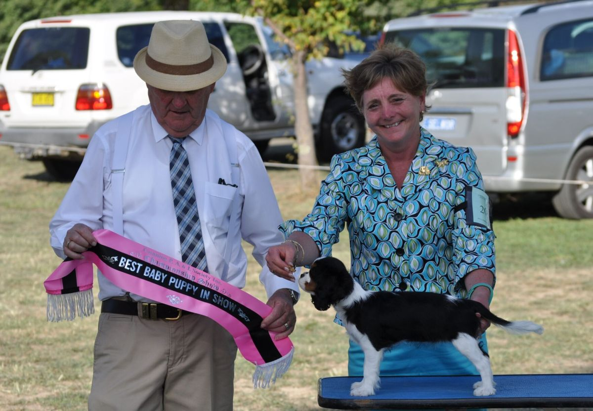 Margaret with Jamie Baby Puppy in Show
